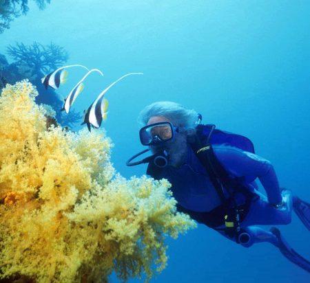 cousteau diving