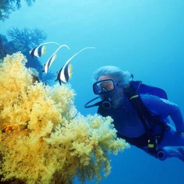 scuba cousteau