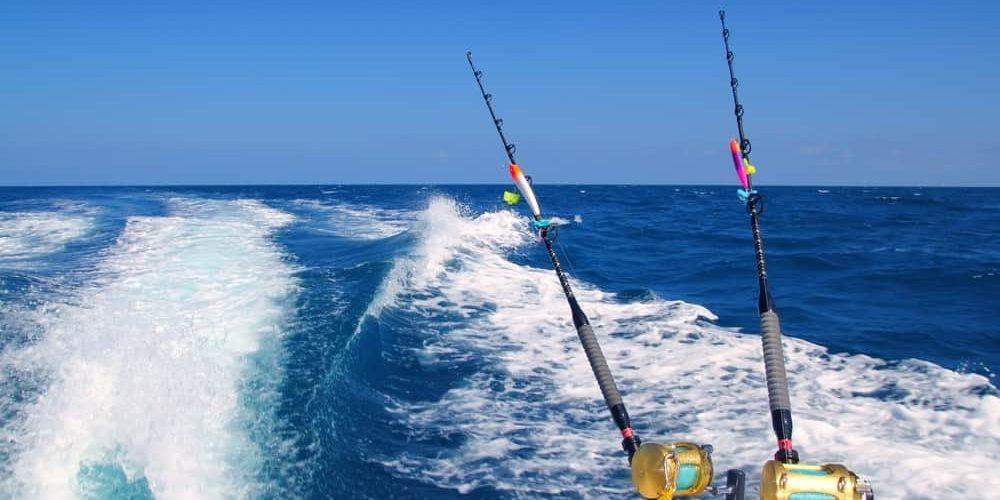 Trolling for fish is one of the most exciting ways to catch a winner.