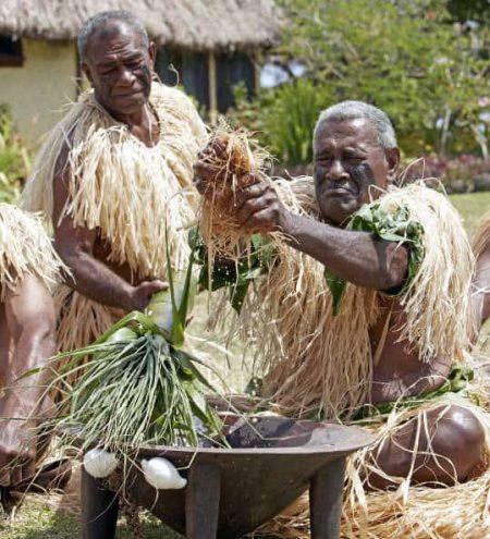 Fiji Kava Traditional