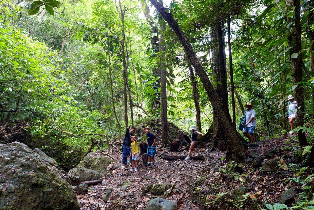 Fiji JMC Medicine Walk