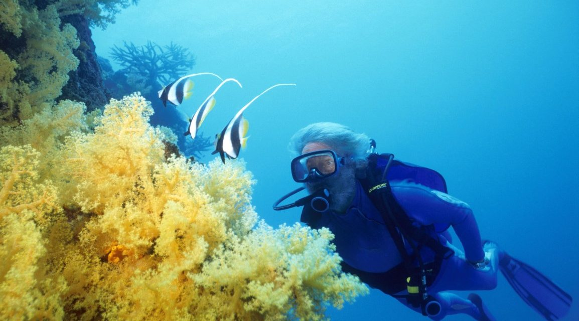 Jean Michel Cousteau Diving
