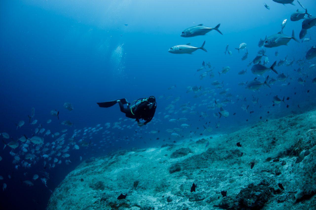 Fiji Namena Dive Site