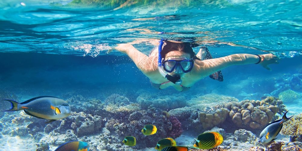 Some of the best diving in the world can be found in Savu Savu Bay.