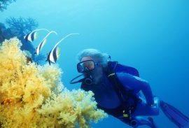 jean michel cousteau diving