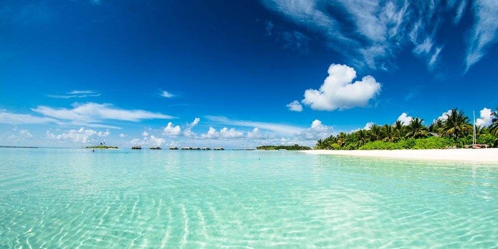 How can you experience Fiji like a true local?